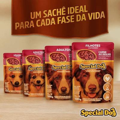 Sachê Special Dog Carne