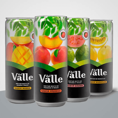 Néctar Del Valle  Lata 290ml