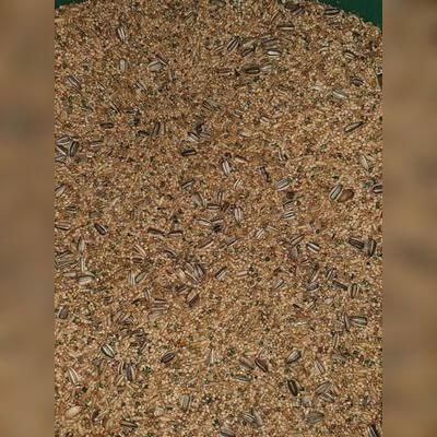 Mistura para Calopsita 1kg a granel